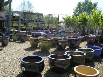 Pots at Kirkdale Nursery